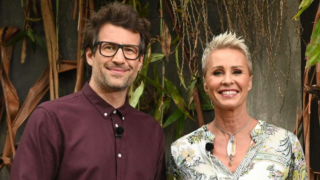 Dschungelcamp 2020: Unterlief Daniel Hartwich, hier mit Co-Moderatorin Sonja Zietlow, eine folgenschwere Panne?