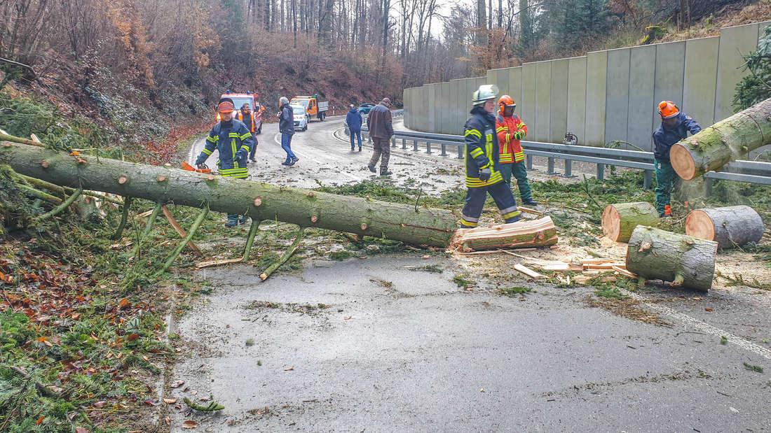 Ein Unwetter in der Region hält die Feuerwehren auf Trab. Zahlreiche Bäume werden entwurzelt und fallen auf die Straße.