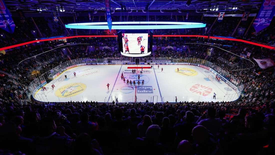 Seit 2005 spielen die Adler Mannheim in der SAP Arena.