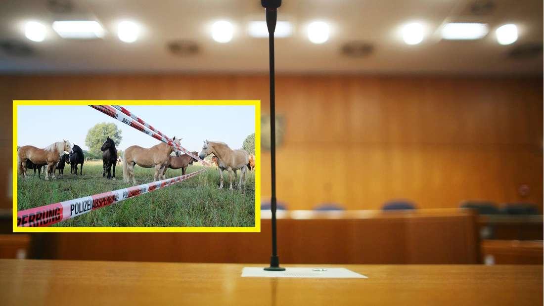 Landgericht in Frankfurt am Main. Pferdekoppel mit Polizeiabsperrband.