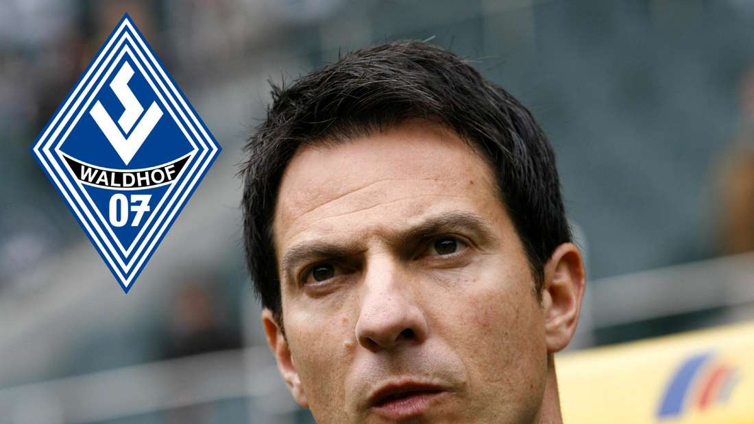 Wird Marco Pezzaiuoli neuer Trainer des SV Waldhof Mannheim?