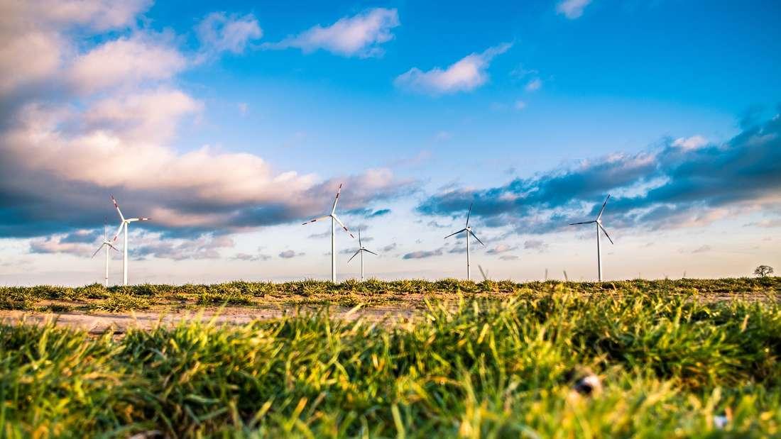Erneuerbare Energien spielen bei der Wahl des passenden Stromanbieters zunehmend eine Rolle.