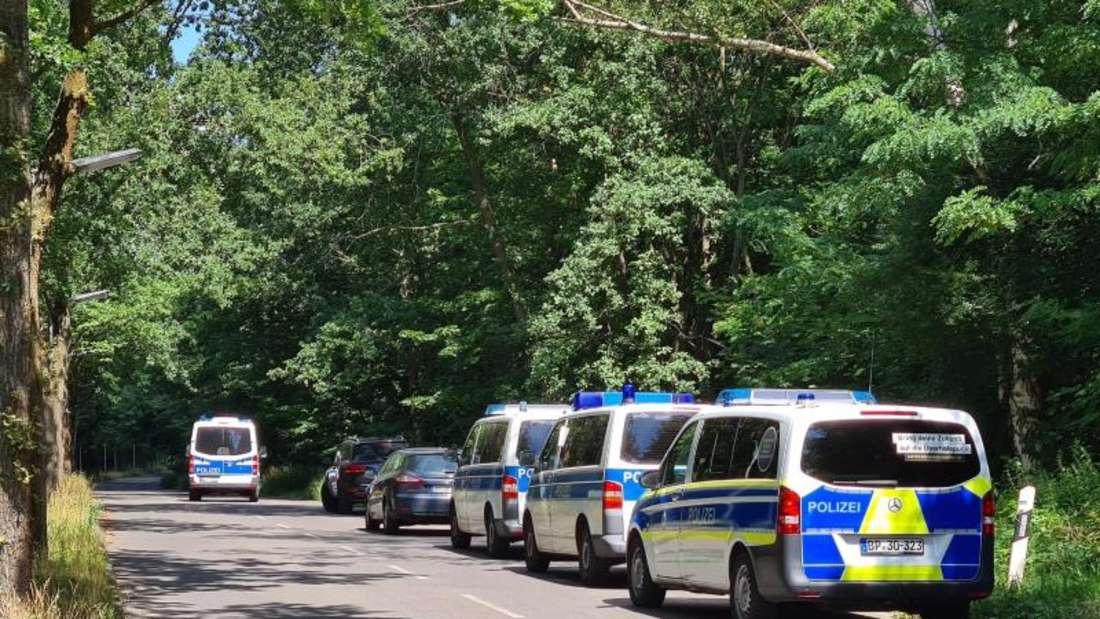 Polizeiautos stehen in einem Waldstück zwischen Babelsberg und Dreilinden. Foto: Julian Stähle/dpa-Zentralbild/dpa
