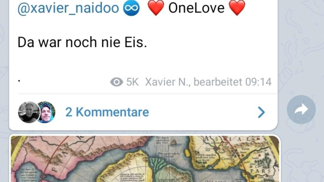 Ein Screenshot aus dem Chat von Xavier Naidoo.