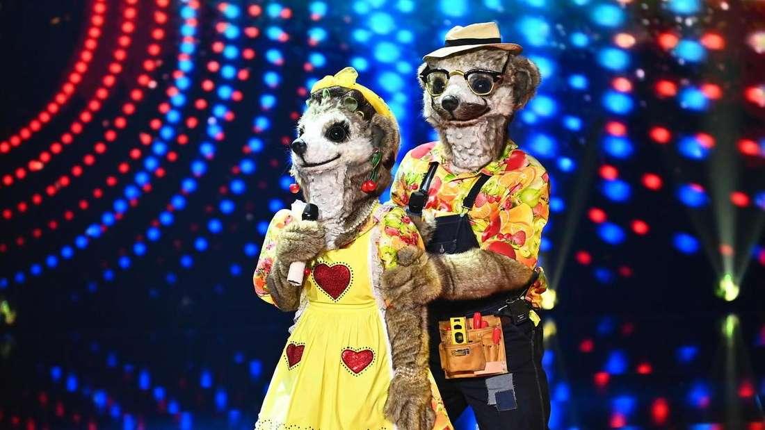 """Erdmännchen-Paar bei """"The Masked Singer"""" auf ProSieben"""