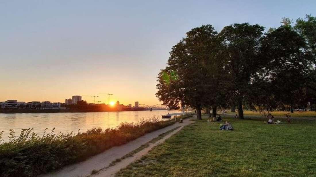 Sonnenuntergang an den Rheinterrassen.