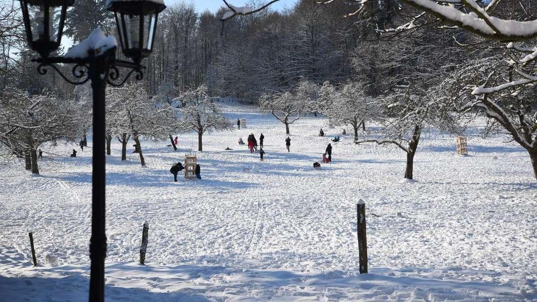Zahlreiche Familien genießen bei bestem Winterwetter den Schnee auf dem Königstuhl in Heidelberg.