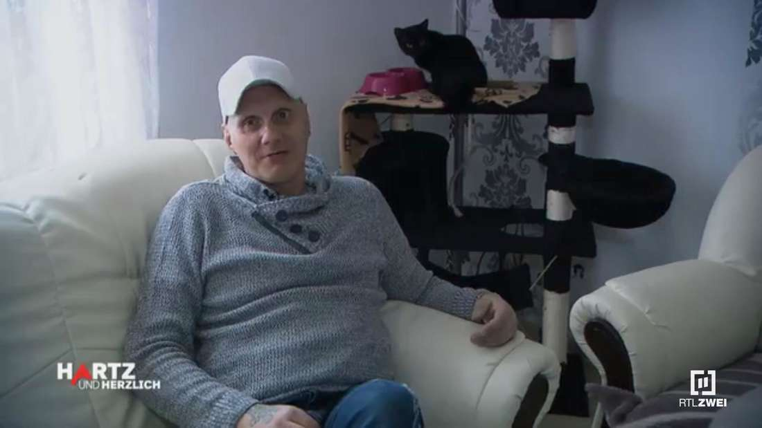 Elvis sitzt auf dem Sofa und im Hintergrund ist seine Katze auf einem Kratzbaum