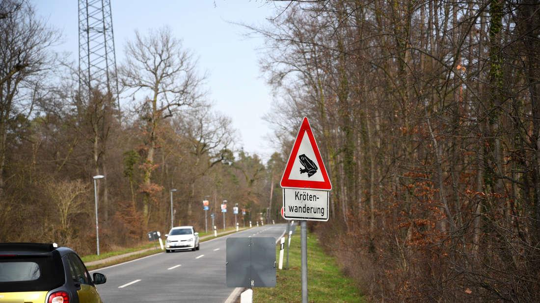 Viele Straßen sind betroffen. Im Bild: K 4153 zwischen Sandhausen und Walldorf.
