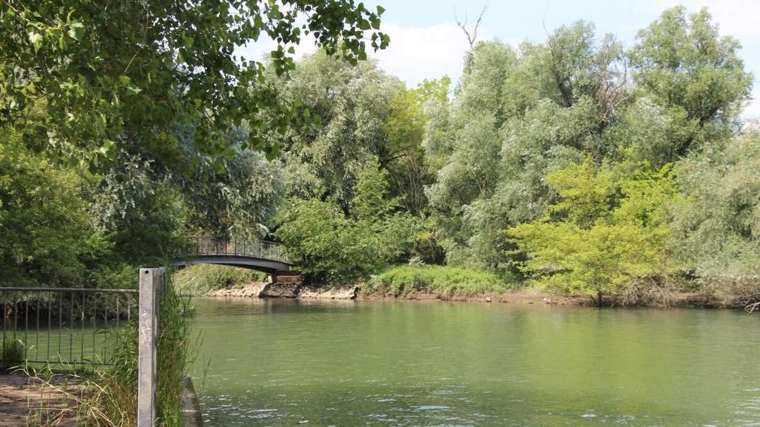 Der Waldpark und die Reißinsel im Lindenhof - wer kriegt da nicht Lust zu Wandern?