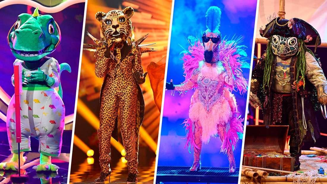 The Masked Singer: Dino, Leopard, Flamingo und Schildkröte