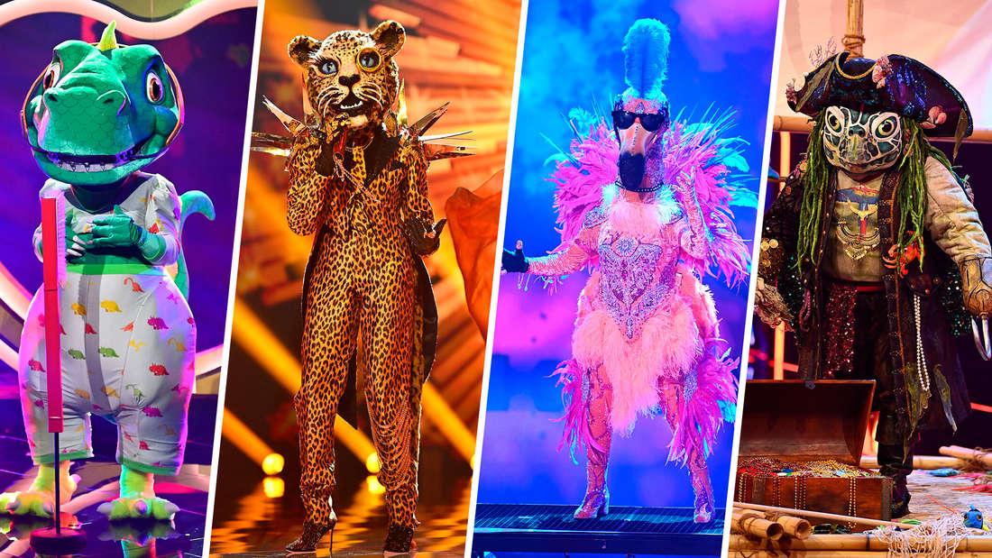 """Die Finalisten der 4. Staffel von """"The Masked Singer"""""""