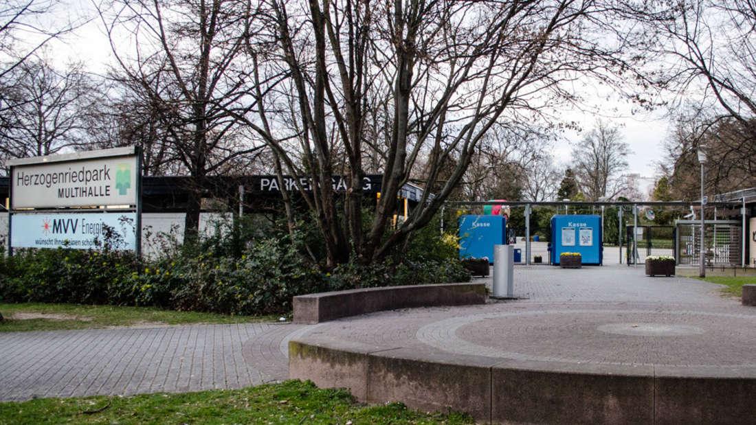 Ein Naherholungsgebiet mitten in der Stadt: Der Herzogenriedpark in der Neckarstadt.