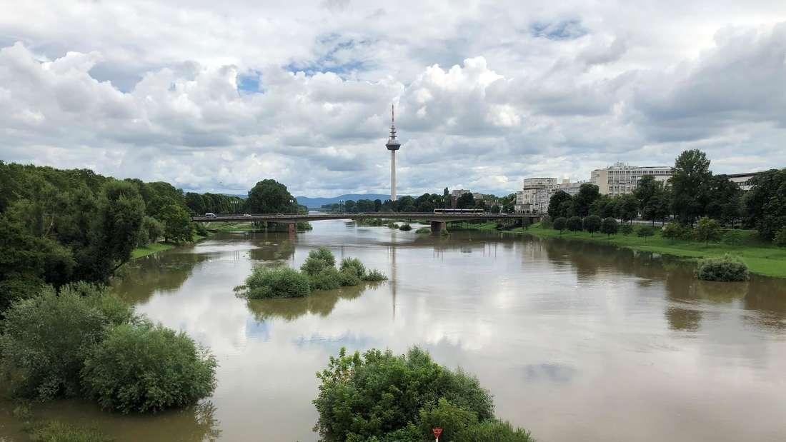 Mannheim: Hochwasser am Neckar. Mehrere Zuwege und Abfahrten zum Neckar auf Höhe Collini Center sind gesperrt (15. Juli 2021).