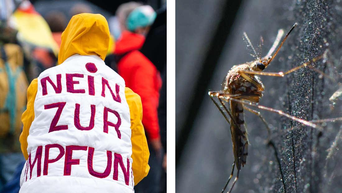 Eine Impfgegnerin, daneben eine Mücke.