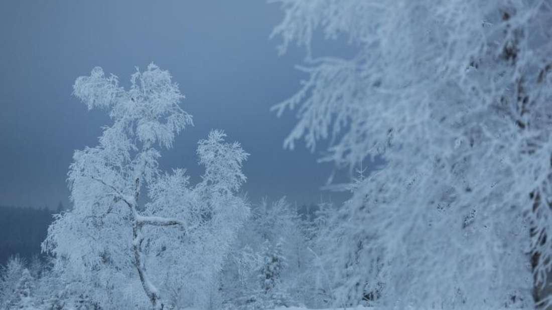 Winterwetter wird dieses Jahr laut ersten Prognosen wieder möglich. (Symbolbild)