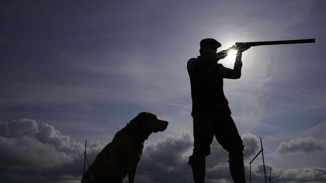 Ein Jagdhund sitzt neben einem Jäger