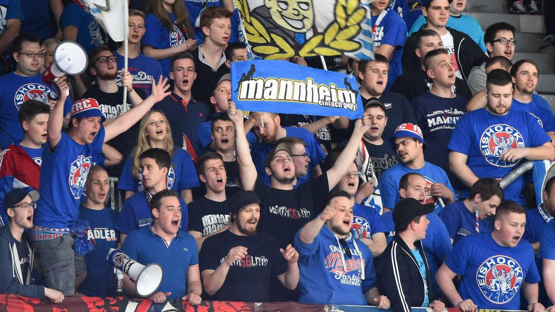Die Fans der Adler Mannheim können wieder in der SAP Arena mitfiebern. (Archivfoto)