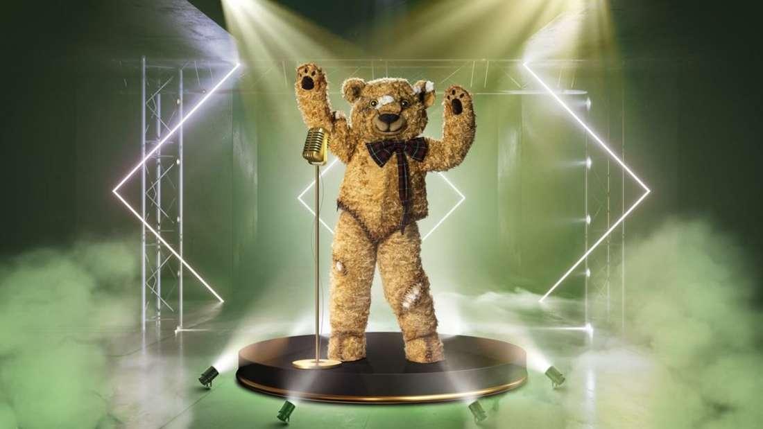 Der Teddy steht auf der Bühne im Rampenlicht
