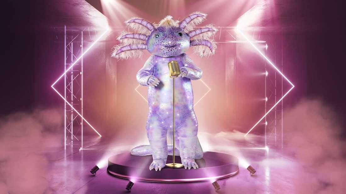 Ein lilafarbenes Axolotl-Kostüm